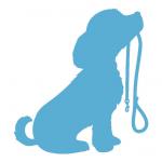 chiens et animaux domestiques
